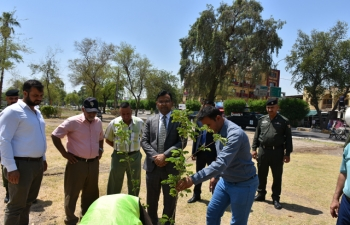 Plantation by the Embassy at Al Safwa Garden in Central Baghdad on the occasion of World Environment Day.