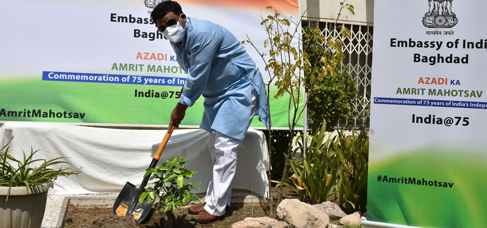 Celebration of World Environment Day 2021 in the Embassy of India, Baghdad